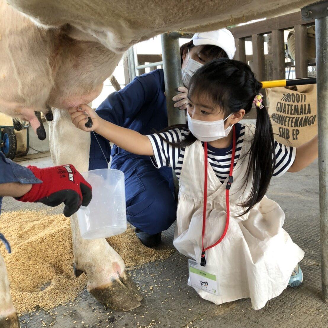動物とふれあう乳搾り&餌やり体験 アグリパーク畜舎体験